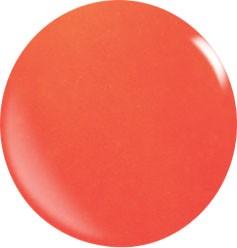 Colore Acryl Powder N049 / 56 gr.