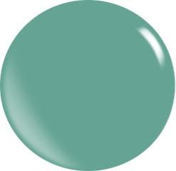Puder akrylowy Color N132 / 56 gr.